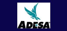 ADESA Auctions